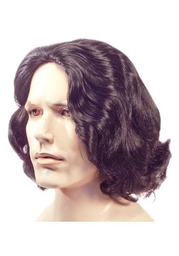 Beethoven Wig