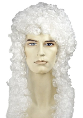 Special Bargain Judge Wig