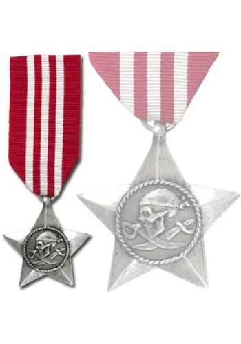 The Rebels Brave Award Medal