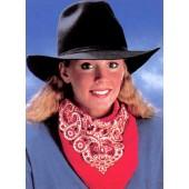 Cowboy Bandana - Paisley