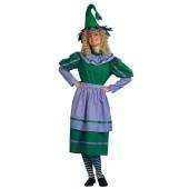 Munchkin Girl Costume - Adult