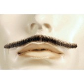 Errol Flynn Mustache, Robin Hood Mustache