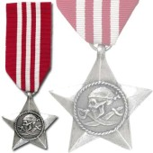 The Rebels Brave Award Medal